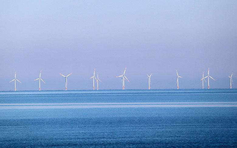 Optimizing the layout of offshore wind farms